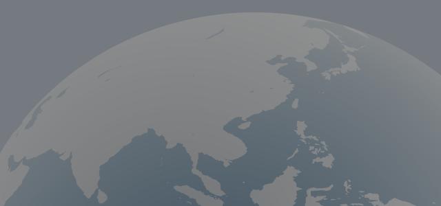 国境と言語を超越した強力なビジネスツール「グローバルサイト」